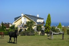 caballos-vistas-mar